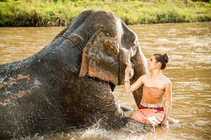 Experience Thailand The Most Amazing Photography Workshop Elephant Bathing © Kevin Landwer-Johan