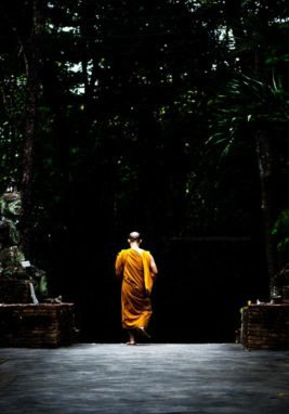 Buddhist monk walking at Wat Umong, Chiang Mai, Thailand. Learn to be prepared to take great photos