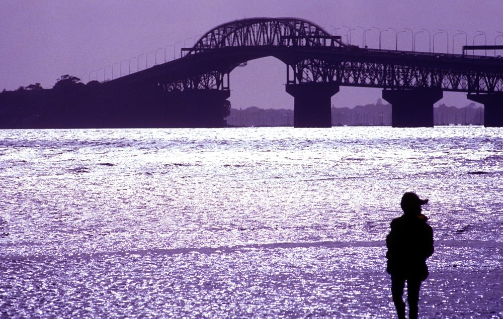 Harbour bridge, Auckland, New Zealand in silhouette with person in foreground